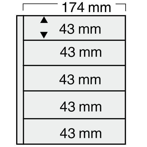 """Feuilles """"Compact"""" - 5 bandes - Paquet de 5"""