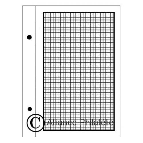 Feuilles à personnaliser FS : pages quadrillées (x50)